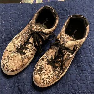 Quipped snake skin sneakers